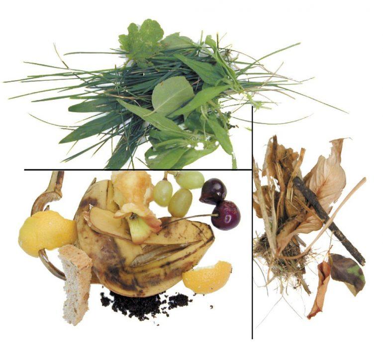 backyard composting materials