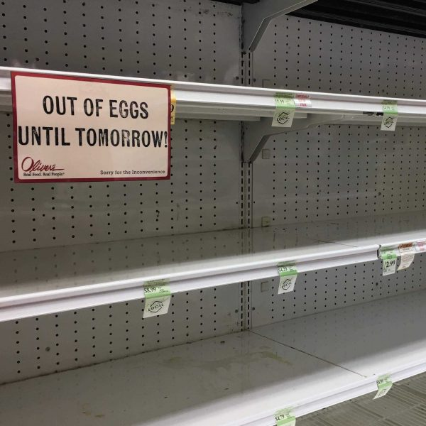 Empty shelves 2