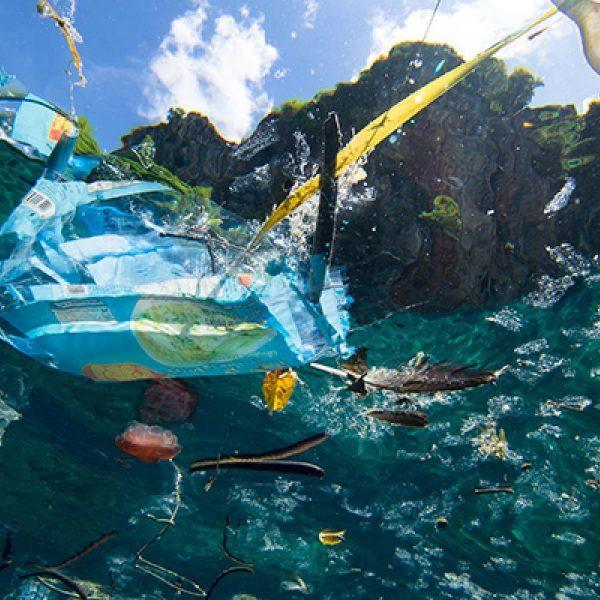 Oceanplastic4